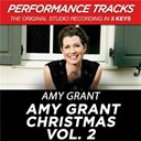 Amy Grant - Amy grant christmas vol. 2 (performance tracks)