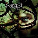 Evanescence - Anywhere but home (live)