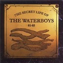 The Waterboys - The secret life of the waterboys '81-'85