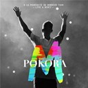 M. Pokora - &Agrave; la poursuite du bonheur tour (live &agrave; bercy 2012)