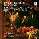 Ensemble Mare Nostrum / Liuwe Tamminga / Odhecaton / Paolo Da Col - Gesualdo da venosa: sacrarum cantionum quinque vocibus
