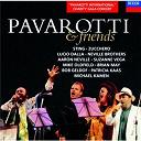 Aaron Neville / Bob Geldof / Brian May / Luciano Pavarotti / Lucio Dalla / Mike Oldfield / Sting / Suzanne Vega / The Neville Brothers / Zucchero - Pavarotti & friends
